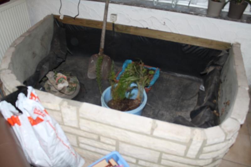 Projet de bassin  Img_7012