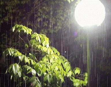 ~~YAGISH!!!~~ Rain13