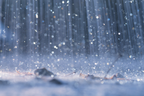 ~~YAGISH!!!~~ Rain_110
