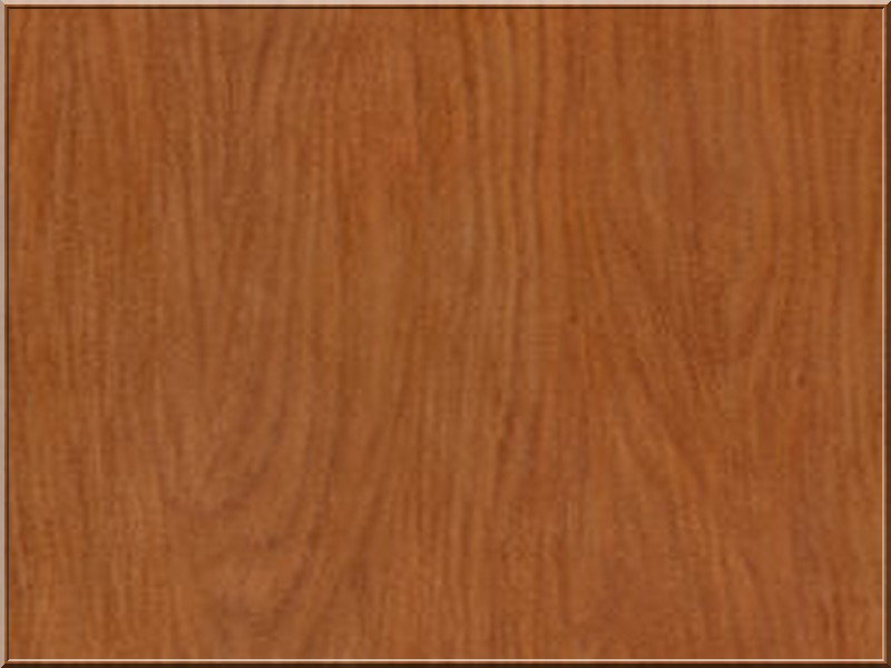 LibreMotus Wood_c10