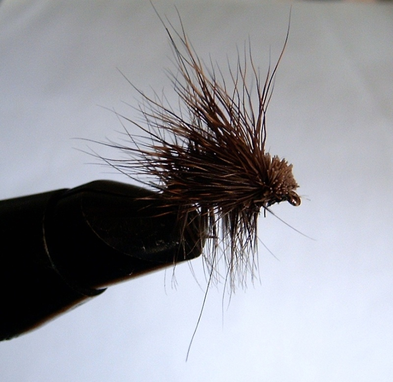 ELK HAIR CADDIS - Page 2 Zox_0211