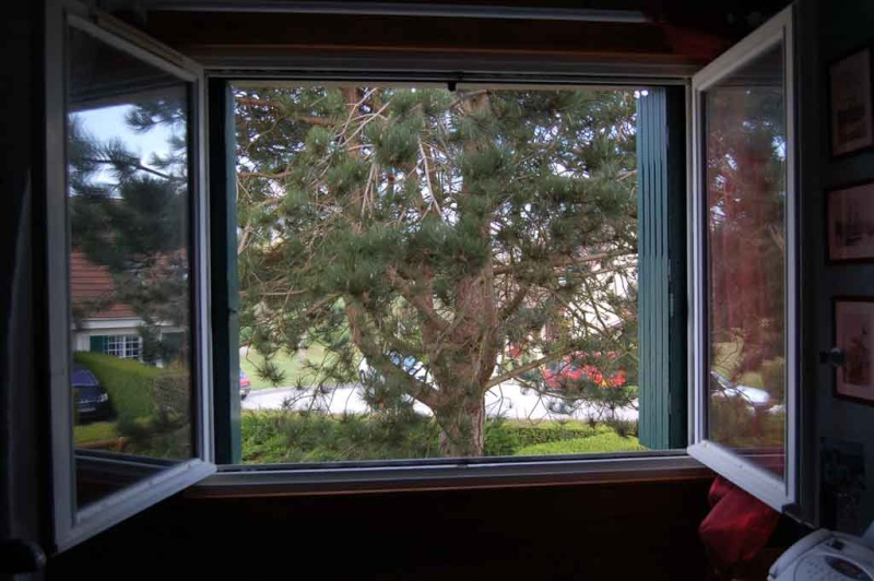 une vue de votre fenêtre (fil ouvert) - Page 2 Fenetr16