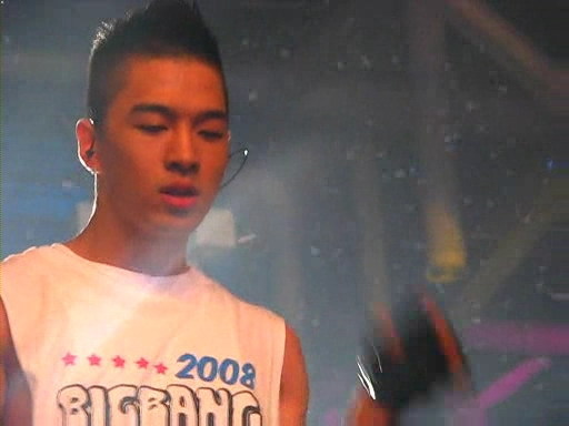 Big Bang Global Warning Concert in BUSAN 12 Apr 2008 (Short clip of HYD parody) 29ypc710