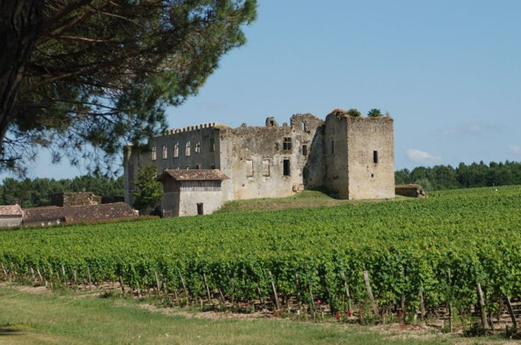 Le Château de Fargues - Sauternes - Gironde - France 42980810