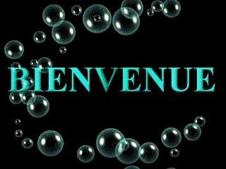 hello ! Bienve11