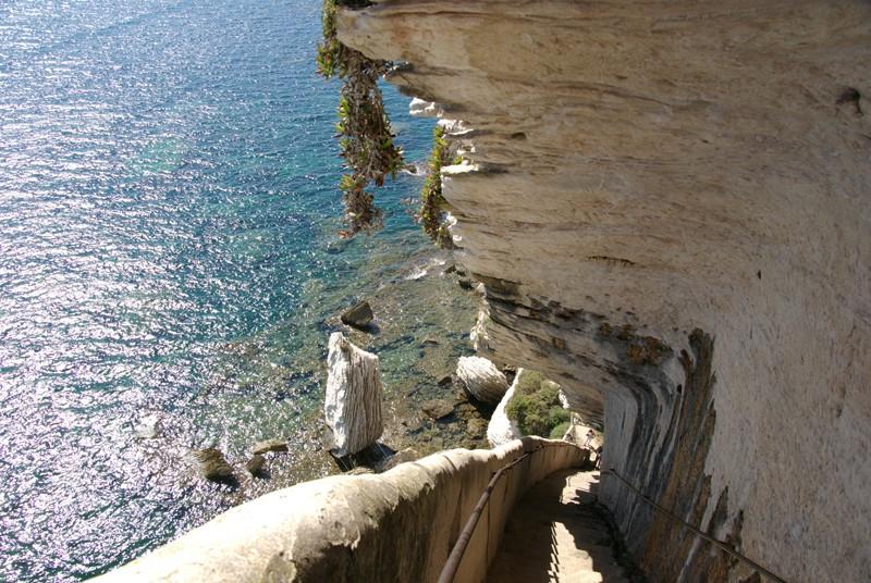 L'escalier du Roi d'Aragon - Bonifacio - Corse - France Escali10