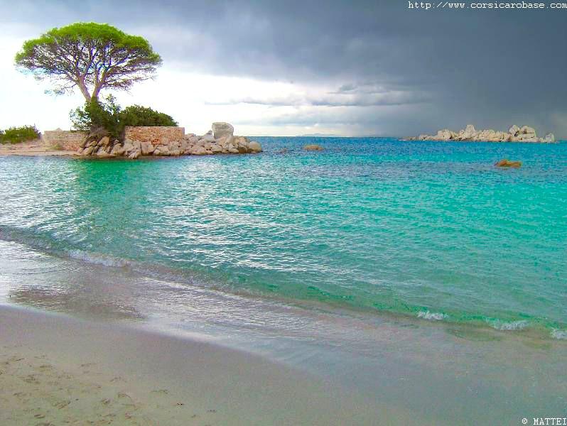 Top 10 des plus belles plages du monde ! Tamari10