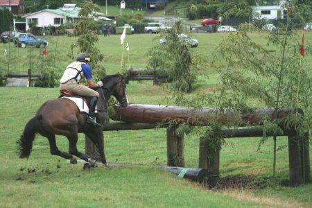 Horse entries I_hope10