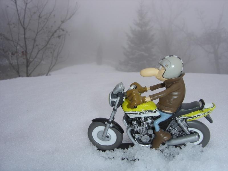 La neige .... presque! Dsc02217