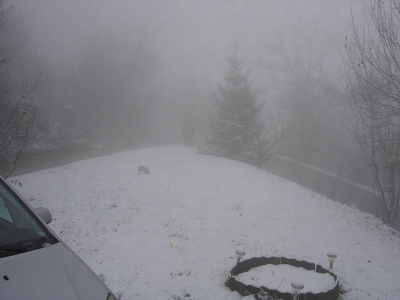 La neige .... presque! Dsc02218