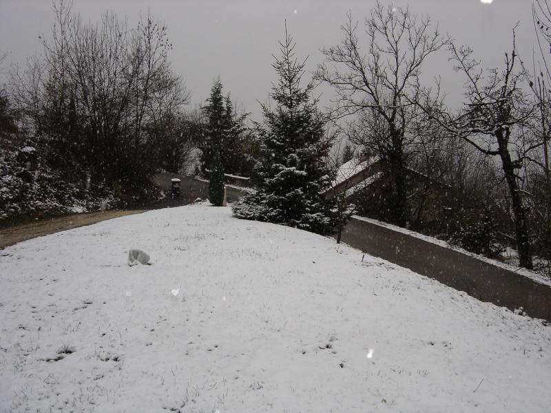 La neige .... presque! Dsc02219