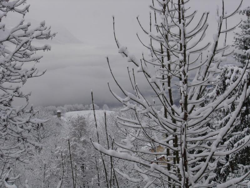 La neige .... presque! Dsc02221