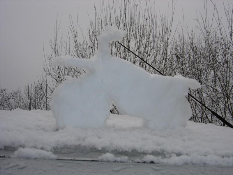 La neige .... presque! Dsc02310