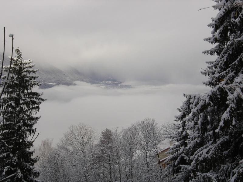 La neige .... presque! Dsc02312