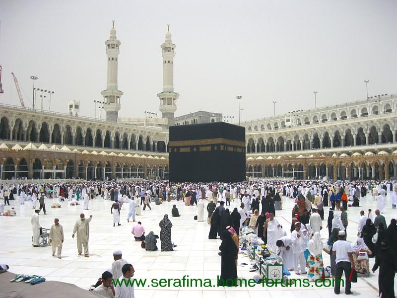 Путешествие в Медину и Мекку. Саудовская Аравия. Святая земля - Страница 2 Img_1120