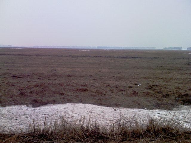 Состояние поля и дорог на Южном... Pole111