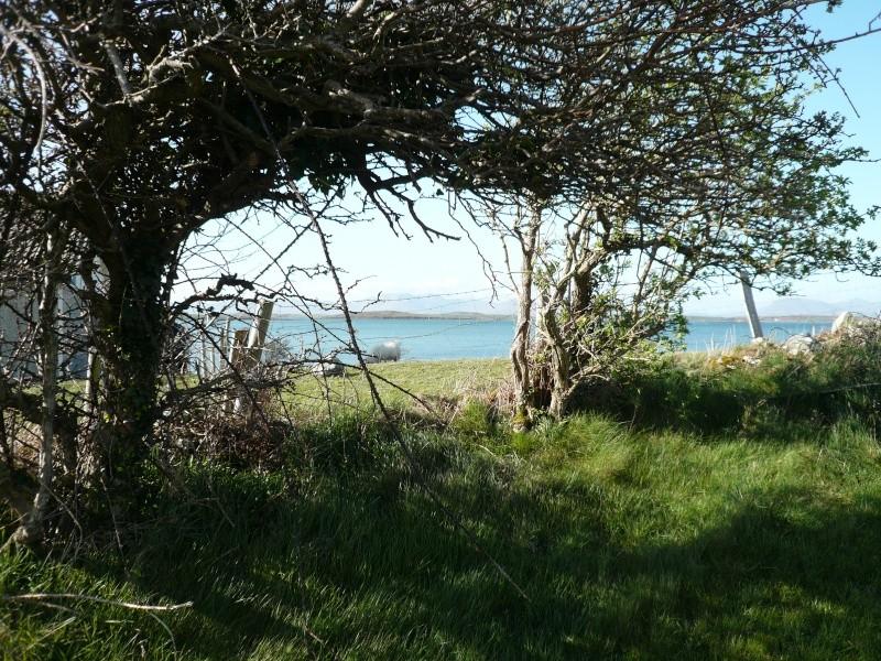 voyage en irlande ! P1000236