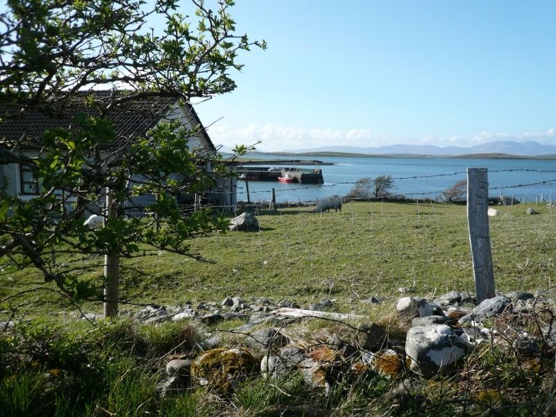 voyage en irlande ! P1000238