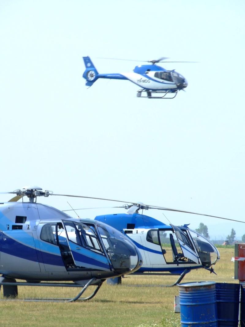 Elicoptere civile, militare, utilitare - 2008 Dscf2411