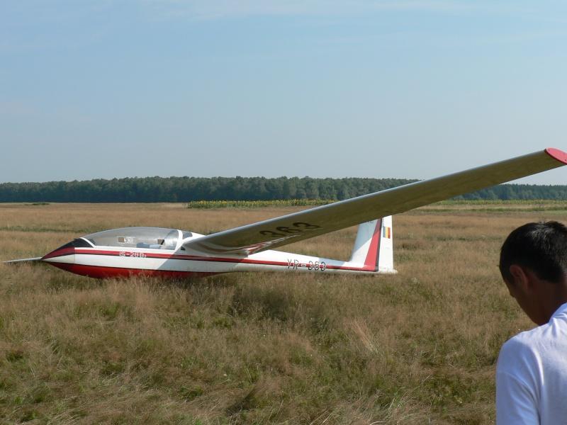 Planoare Yr-36310