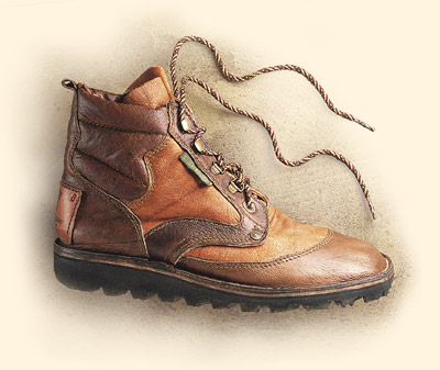 My next pair of Hunting shoes Produc10