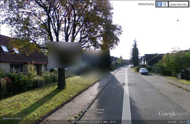 STREET VIEW : Bugs, collages, défauts dans l'image - Page 3 Arbres10
