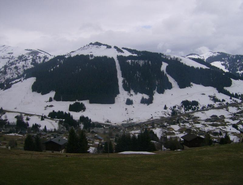Les Alpes Hpim4910