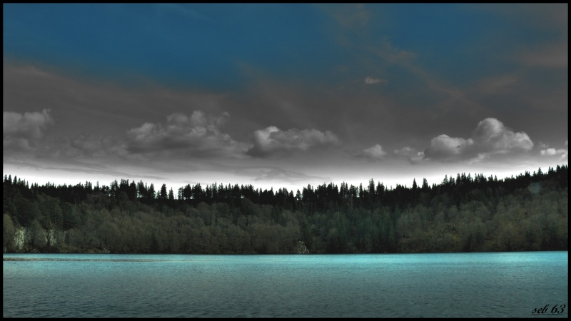 Lac pavin (63) P1020510