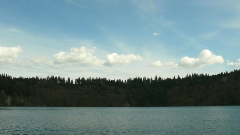 Lac pavin (63) P1020511