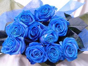 Miq të dashur poeti dhe krijuesi ynë feneri ka ditëlindjën Blue_r10