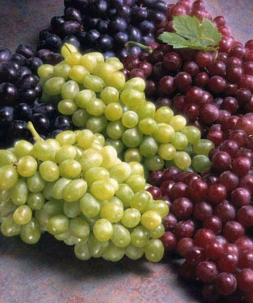 Kafe bar forumi - Faqe 3 Grapes10