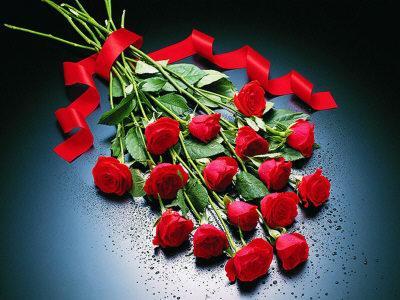 Kafe bar forumi Roses10