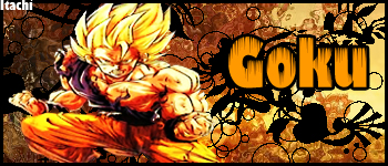 3º Sign-Dragon ball Z/GT Sem_ti55