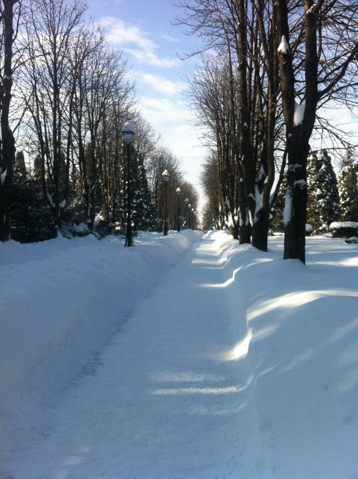 Quelques souvenirs de la neige à Iasi 15/02/2012 =) Iasi_p11