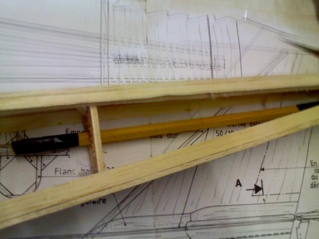 construction de l'affreux jojo Img10013