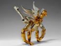 Seahorse Baian 0227