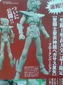 [Aprile 2009] Esclusive Figure OU- Pegasus Broken Version - Pagina 2 Ap200811