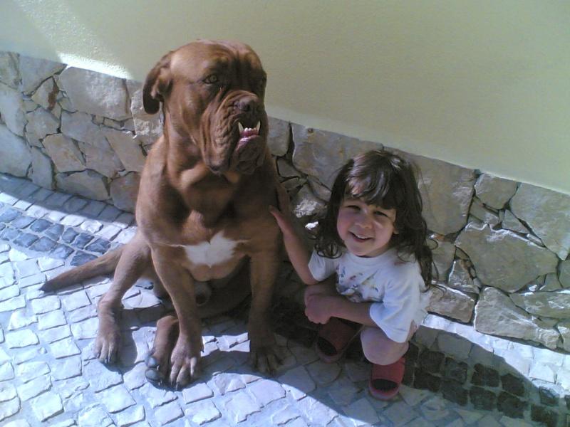 Abela e o Monstro Imagem13