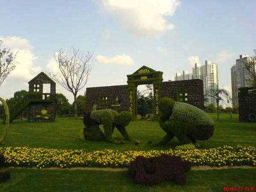 Un jardín de ensueño 510