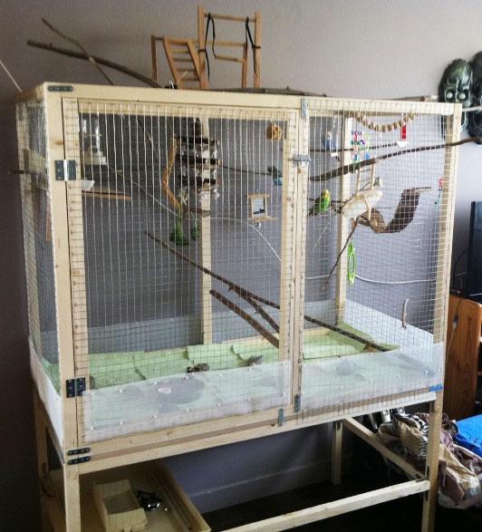 La famille s'agrandit : cages XL et volières d'intérieur Cage_d11