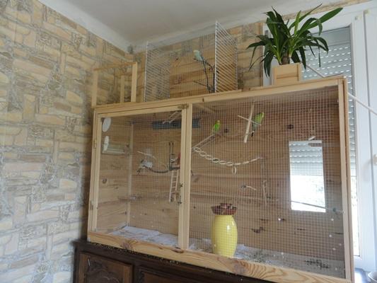La famille s'agrandit : cages XL et volières d'intérieur Cage_m11