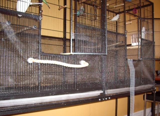 La famille s'agrandit : cages XL et volières d'intérieur Cage_m12