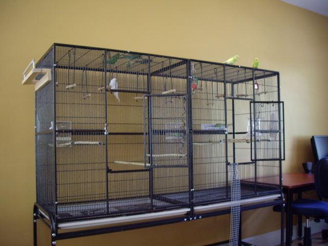 La famille s'agrandit : cages XL et volières d'intérieur Cage_m13