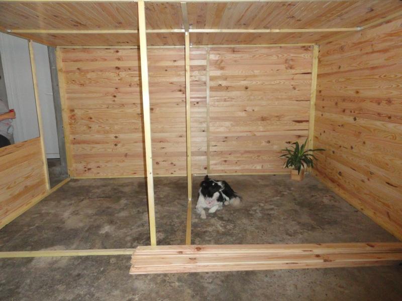 La famille s'agrandit : cages XL et volières d'intérieur Volier13