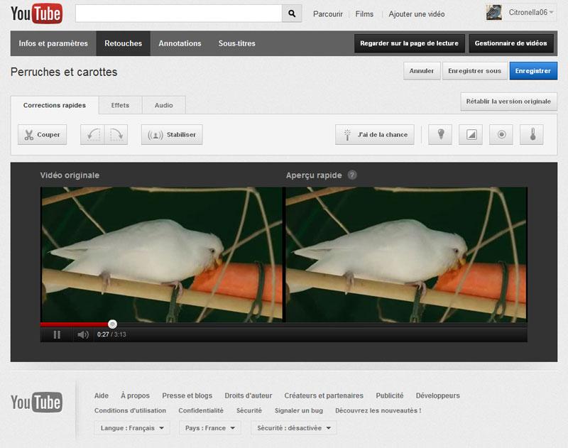 La Chaîne du Forum Perruche Ondulée sur You Tube You_tu10