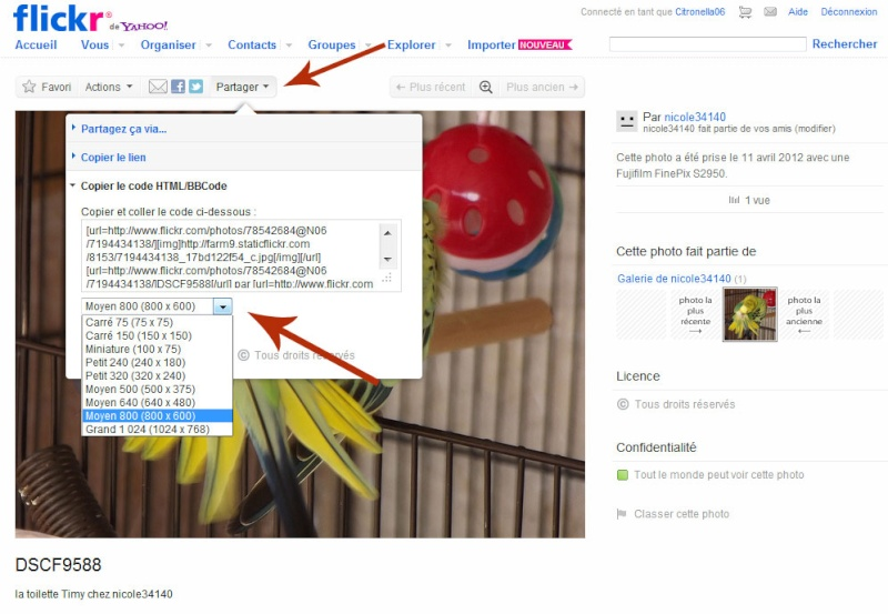Diaporama vidéo du forum, postez ici vos meilleures photos Z_exem11