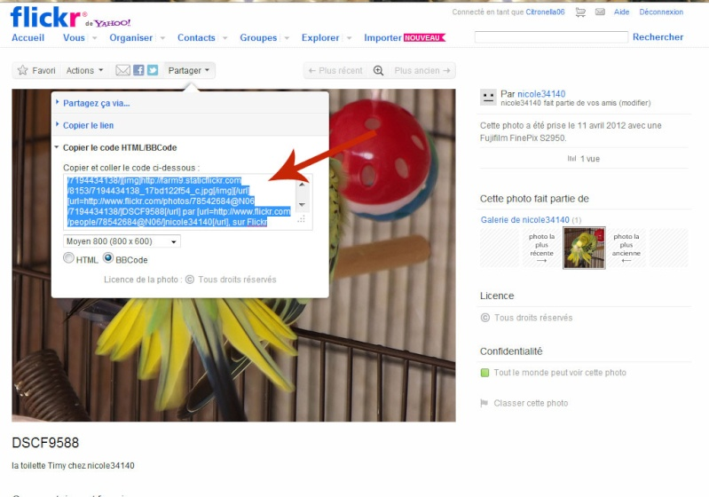 Diaporama vidéo du forum, postez ici vos meilleures photos Z_exem12
