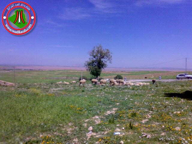 دوّار الكاف لحمر أولاد سلام ولاية باتنة (تعرف على جمال الريف الجزائري) 24042017