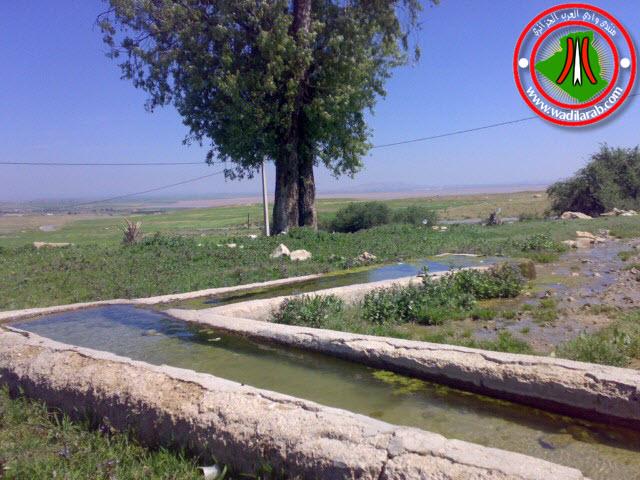 دوّار الكاف لحمر أولاد سلام ولاية باتنة (تعرف على جمال الريف الجزائري) 24042018