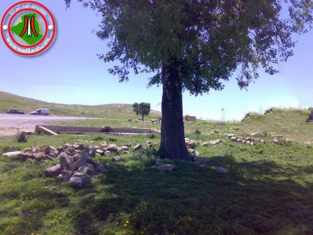 دوّار الكاف لحمر أولاد سلام ولاية باتنة (تعرف على جمال الريف الجزائري) 24042019